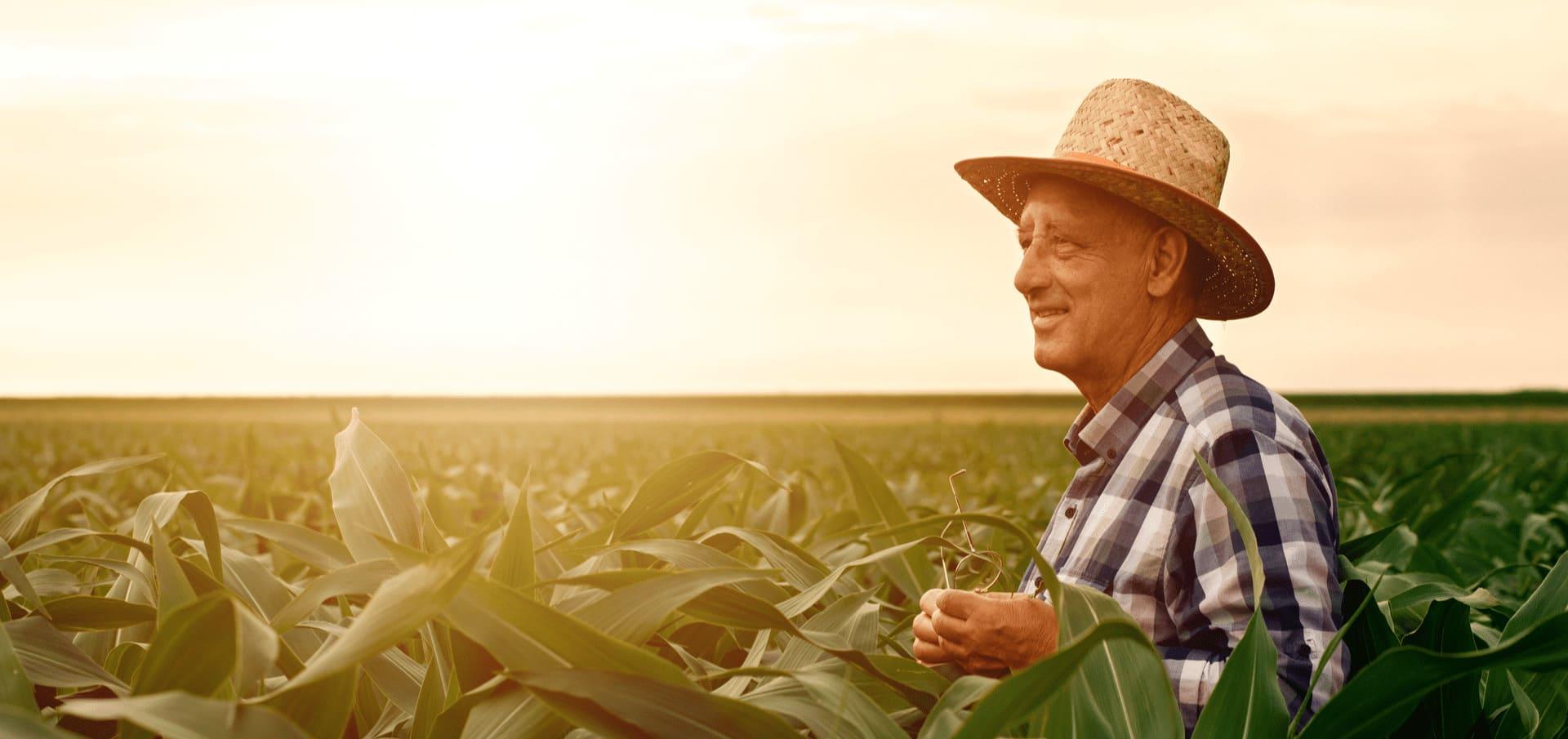 GLP para agronegocio